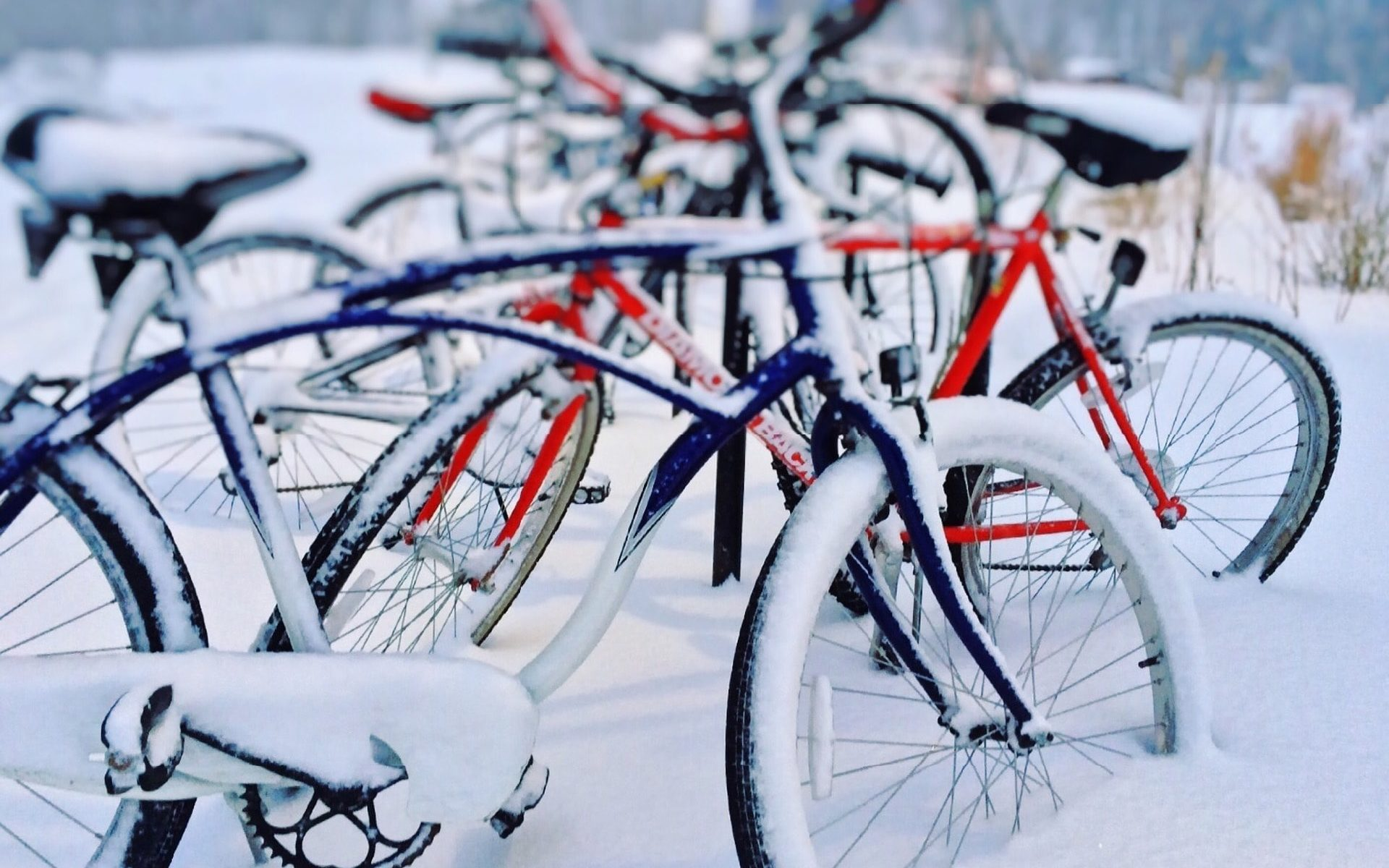 richtige winterpflege f r dein fahrrad fahrrad selber. Black Bedroom Furniture Sets. Home Design Ideas